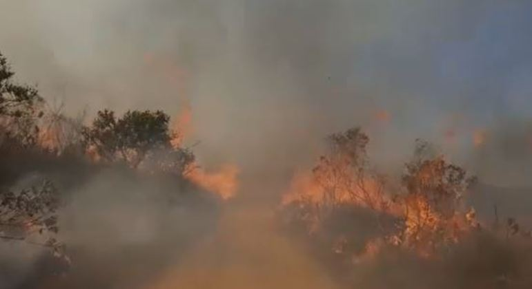 Incêndio no Parque Juquery dura mais de 20h e destruiu 1.200 hectares de vegetação