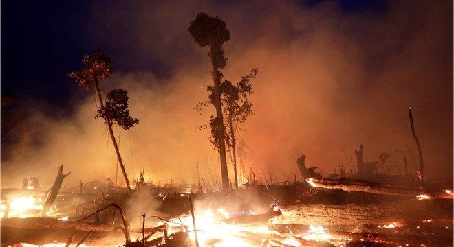 A Frente Parlamentar da Agropecuária (FPA) é contra a exigência dos mesmos 80% de reserva legal em toda a Amazônia Legal
