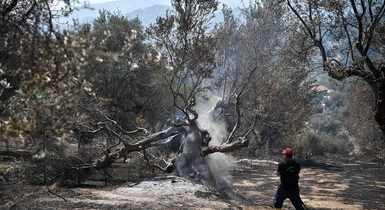 Incêndio arrasa noroeste da península grega do Peloponeso