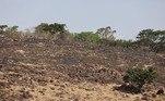 Ainda não é possível dizer qual a extensão das áreas atingidas, mas o incêndio é de grandes proporções