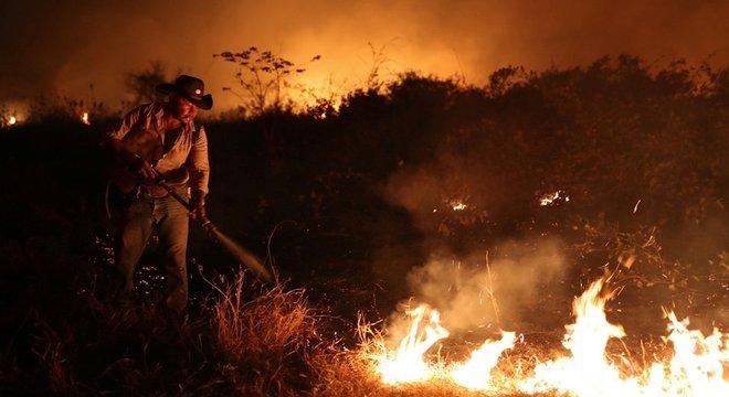Atualmente as maiores ameaças das onças-pintadas são as queimadas na Amazônia e no Pantanal, principais refúgios da espécie