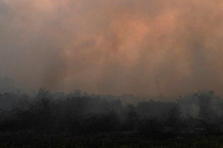 Região do Pantanal sofre com queimadas
