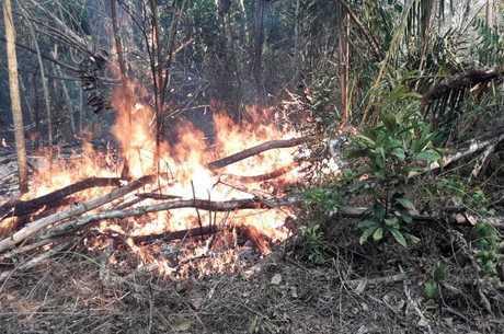 Incêndio atinge parque nacional há quatro dias