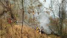 Bombeiros recebem 234 chamados de incêndio em 24 horas em MG