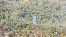Incêndio em vegetação do Parque das Mangabeiras já dura 14 horas