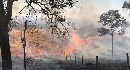 Incêndio já atingiu 400 hectares da região