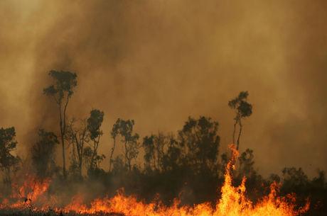 Bolsonaro autoriza Forças Armadas para combate a queimadas
