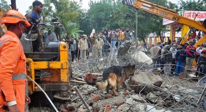 Equipes de resgate usaram cães farejadores para procurar as vítimas