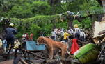 A água também inundou uma fábrica de purificação de água, interrompendo o abastecimento