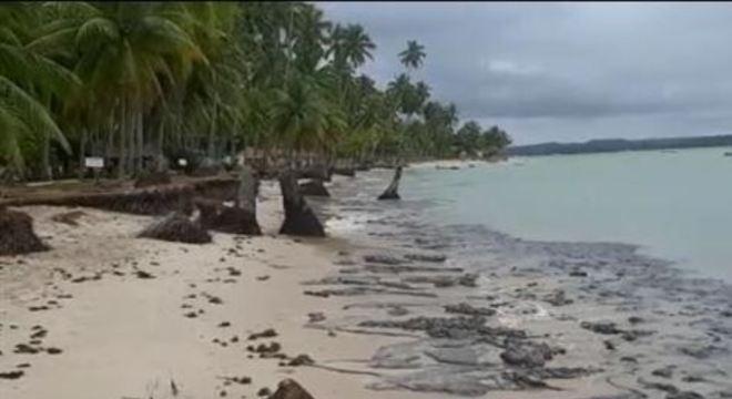Informação foi confirmada pela Secretaria de Meio Ambiente de Pernambuco