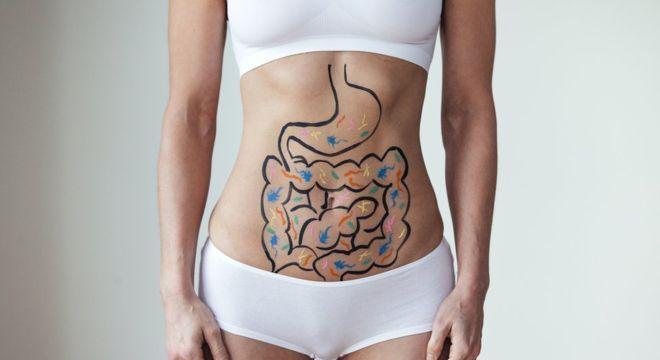 """""""Nosso intestino tem autonomia para tomar decisões"""", diz a doutora Rossi"""
