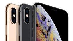 Brasileiro deve poupar por 17 meses para conseguir comprar iPhone Xs Max  ()