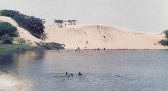"""""""Um dos papéis da vegetação de dunas é segurar o processo de transporte da areia pelo mar, ondas ou ventos"""", explica Clemente Coelho Júnior, da UPE"""