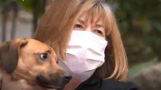 Mulher que devolveu cão para verdadeiro dono ganha surpresa (Reprodução)