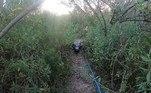 Um homem foiperseguido por um jacaréenquanto pescava tranquilamente na Flórida