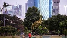 'Cidade ideal' deveria ser tão saudável quanto verde