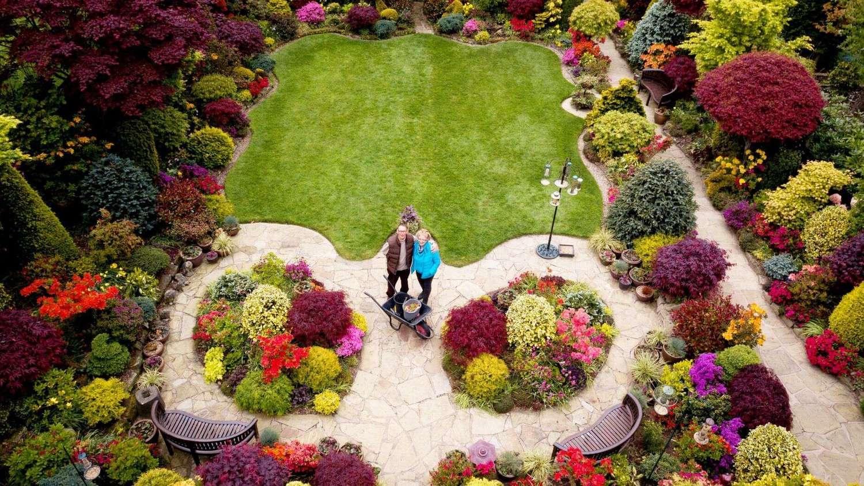 Eles aproveitaram a quarentena para colocar novas mudas de flores no jardim