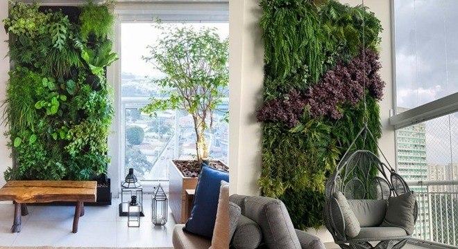 Jardim vertical: saiba como cultivar plantas que quase não ocupam espaço