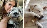 Jennifer Aniston anunciou, recentemente, uma terceira adoção, uma vira-lata chamada Lord Chesterfield. A atriz postou uma foto onde ela é visto dormindo com um ossinho na boca. A cachorrinha se juntou a dois dos outros cães de Jennifer: Clyde, uma mistura de Schnauzer, e Sophie, um pit bull branco