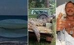 Homem é totalmente engolido por baleia-jubarte durante mergulho.Crocodilo em praia surpreende geral, boia, mas não pega jacaré.A história de Osama, o crocodilo que matou 83 pessoas até ser pego.A seguir, as notícias mais bizarras e lidas doHORA 7na última semana!