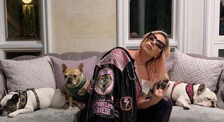 Lady Gaga com os três cachorrinhos