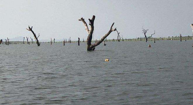Construção de represa inundou área de Gana que virou a maior reserva aquática já feita pela ação humana