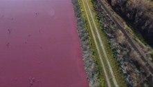 Resíduos industriais deixam lagoa na Patagônia com a água rosa