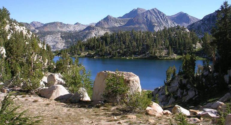 Algas tóxicas acumuladas em lago são suspeitas de morte misteriosa de família