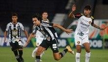 Botafogo se torna campeão com queda mais precoce para Série B
