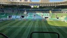 Palmeiras terá mosaico provocativo ao Santos em cadeiras do Allianz