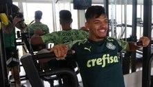 Palmeiras faz treino físico no Recife antes de retornar para São Paulo