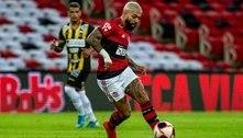 Flamengo acerta parceria e Havan é nova patrocinadora do futebol do clube