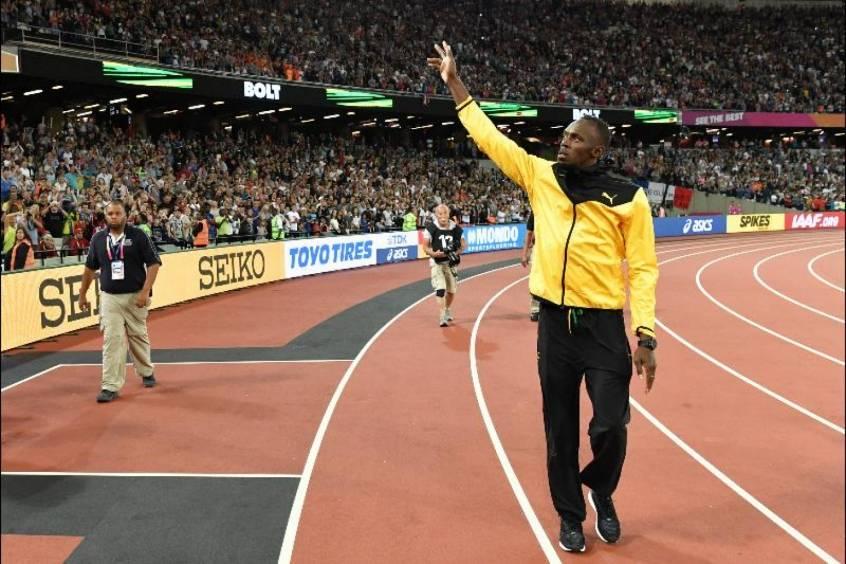 Recorde de Bolt quase é superado por cadela que escapou de donos e