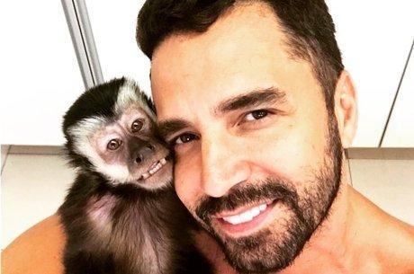 Macaco Twelves morreu atropelado em março