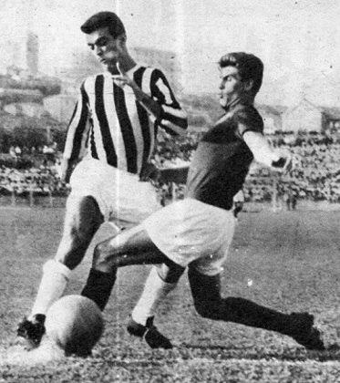 Leonardo Colella (Nardo) - atacante - 1955/1956 - 21 jogos e 7 gols - Clubes no Brasil: Corinthians, Comercial, Palmeiras, Portuguesa e Ponte Preta