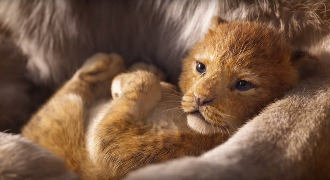 Live-action de 'O Rei Leão' ganha primeiro trailer Crédito: Reprodução / Youtube / CP