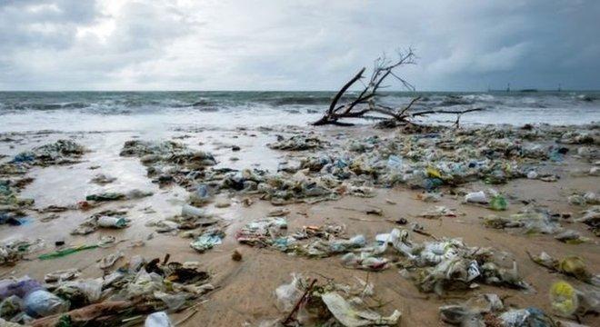 """""""Estamos usando tanto plástico que é por isso que seremos lembrados"""", disse bióloga microplástica da Universidade da Califórnia"""