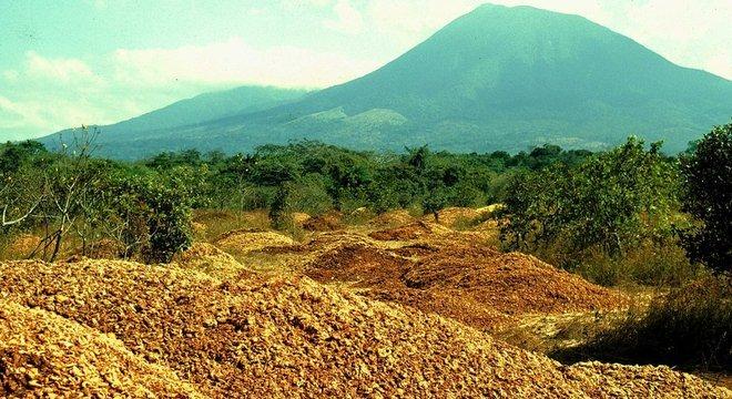 Mais de 1 mil caminhões despejaram 12 mil toneladas de casca e polpa de laranja em pastagens áridas na Reserva Guanacaste, no norte do país