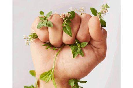 Empresa vai ajudar meio ambiente e mulheres