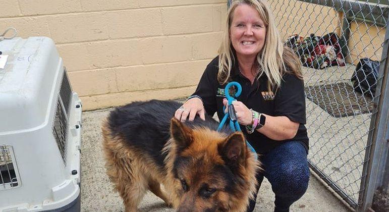 Lorraine Edwards ajudou a transportar os cachorros para canis