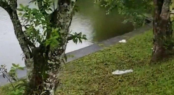 Corpo é encontrado em lago no Parque Municipal do Pedroso, em Santo André