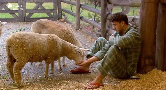 Enquanto estava na Baia, Lucas Viana acordou mais cedo e foi direto ver as ovelhas
