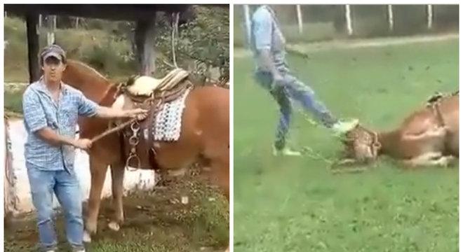 Homem acusado de maltratar animal