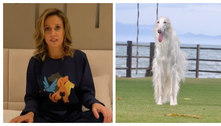 Luisa Mell rebate acusações de roubo de cachorra de raça