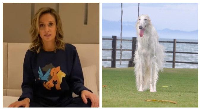 Luisa Mell disse que cachorra foi resgatada em canil clandestino em ação com a polícia