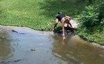 As imagens foram registradas e compartilhadas no Facebook por uma visitanteBombou no HORA 7!'Monstrinho' encontrado em bosque choca a web enquanto se alimenta