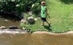 Enquanto a mãe tentava distrair os jacarés com uma vara ou jogando pedras na água, o filho alertava: