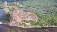 No Pará, PF faz a maior apreensão demadeira nativa da história