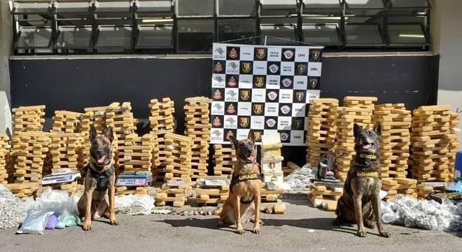 Foram encontrados 974 tijolos e 2.111 porções menores de maconha