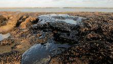 Inquérito da Marinha aponta suspeitos por vazamento de óleo